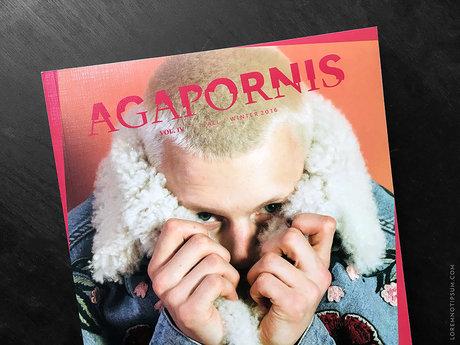 Agapornis Magazine – von Tieren und Menschen